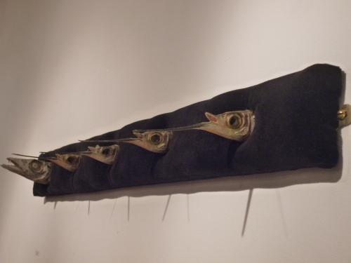 Amaia Allende's fish heads preserved in salt